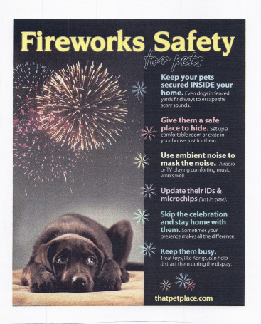 fireworks safety 2 of 2 thumbnail